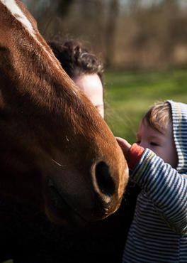 Tierfotograf aus Oranienburg – Pferdefotos und Hundefotos